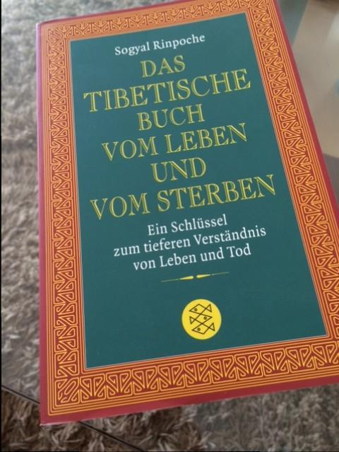 dastibetischebuch